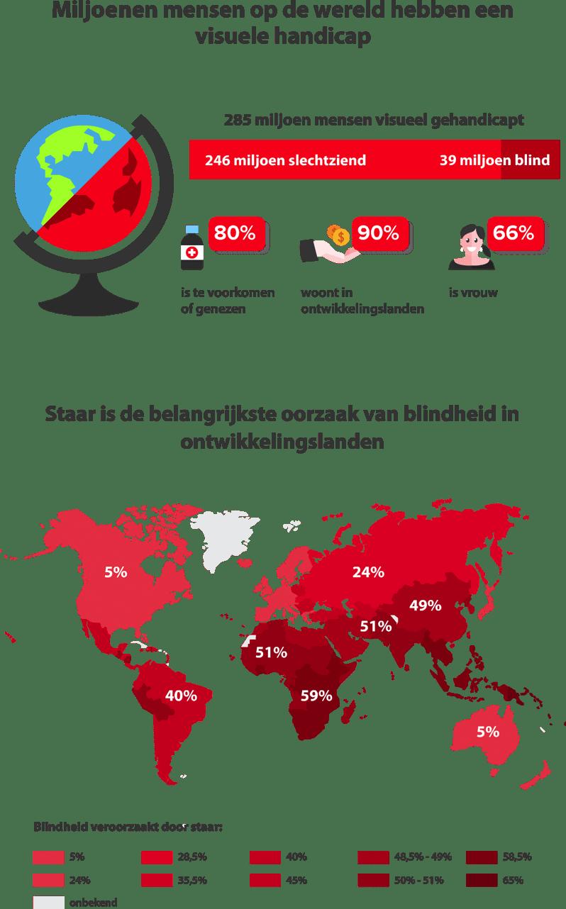Infographic Visuele handicaps en armoede
